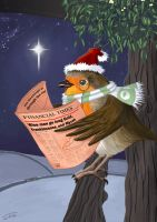 Robin Christmas Card by Jats