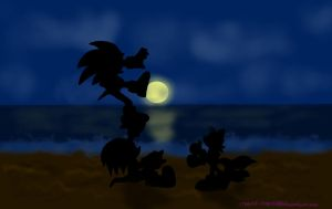 Sonic Team- just screwing around on the beach... by Agent-Arizona