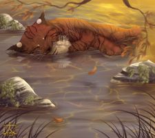 River Nap by Miosita