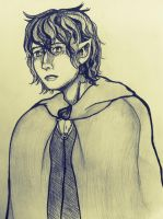 Mr. Frodo by Deniigi-Studios