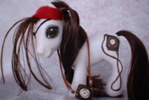 Pirate Navigator Pony Four by AdeCiroDesigns