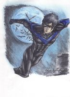 Nightwing by Johnny-Naru