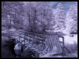 IR Bridge II by sic-purity