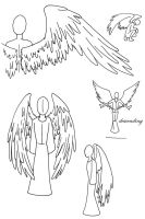 anatomy of angel wings by myst-walker-in-gray