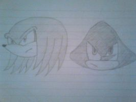 Knuckles and Espio by jharris5398