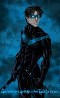 DC Comics: Nightwing by kimberly-castello