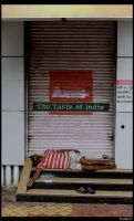The Taste of India by jadedPhotographer