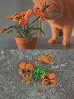 Cat and orange flowers by beads-poet