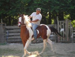 Riding His Pinto Horse by Horses101