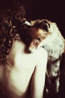 fox and the Girl.. by laura-makabresku