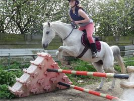 .: More Bridleless Jumping :. by WB-Equine-Art