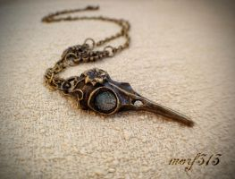 Crow Raven Bird Skull Gothic Necklace Magic Wicca by dirtym0rf