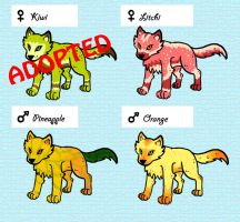 Wolf adoptables 8 by 32d