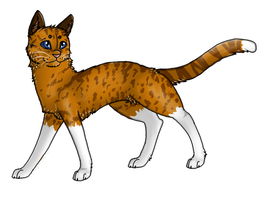Leopardstar :AT: by Aussienka