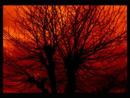 EvilTree by ToWelcomeTheFade