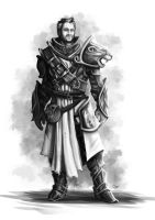 Divinity: Original Sin - Concept Art 06 by orogion