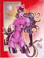 Catwoman (#1) by Rodel Martin by VMIFerrari