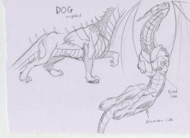 Other dragon anatomy types by DucoNL