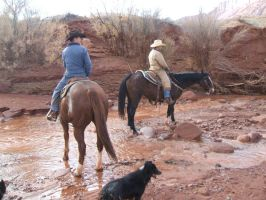 Cowboys 7 .:Stock:. by WesternStock