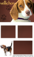 Beagle Layout by Reigning-Graphics