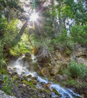 Sun Over the Waterfall by mjohanson