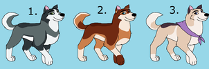 Female Husky Point Adopt Pack 1 by K9RASArt