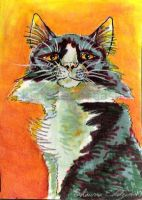 Green cat ACEO by SpottedPegasus