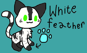 whitefeather ref by brokejaycats