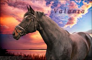 Valanta by roses-at-midnight