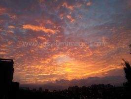 Auckland Sunset by asylumimages