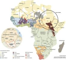 Ethnolinguistic Map of Africa by FringerFrankie
