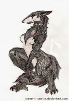 1kisame94's Sergal by cresent-lunette