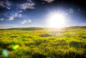 Field of Green by Alexbalix