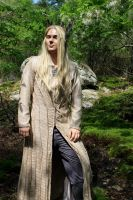 The Elven King of Mirkwood by Angel-or-Phantom