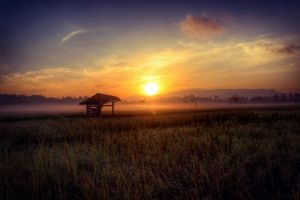 morning at village by adityamarhadi