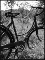 Rustic Bicycle by crimson-moon8