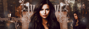 THE VAMPIRE DIARIES by Juliaorlova