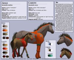 Ainle and Carlyn Charsheet by matena