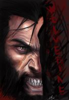 Wolverine by MeliFalco
