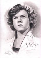 Harry Styles by Gothvm