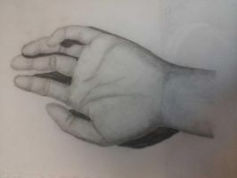 Hand Sketch by peacockhunter