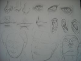 facial studies by MissElsy