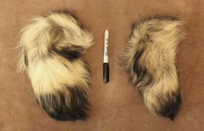 Tanuki Tails (and more) FS! by lupagreenwolf