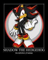 shadow the hedgehog by MRBUCKETGUY