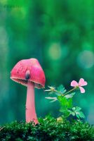 Pink by Nature by AlyshArt