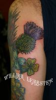 Clover and Thistle - Upper arm by SmilinPirateTattoo