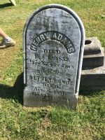 Grave - Henry Adams by little-blind-mouse