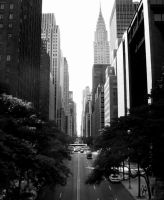 New York City II by DanielJButler