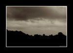 For You, From Me by Trippy4U