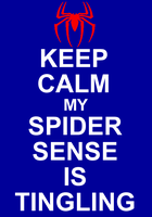 Keep Calm SpiderSenseIsTingiling by GreedLin